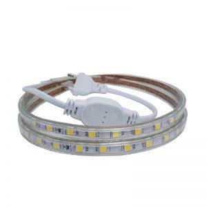 Den-LED-day-220V-5050